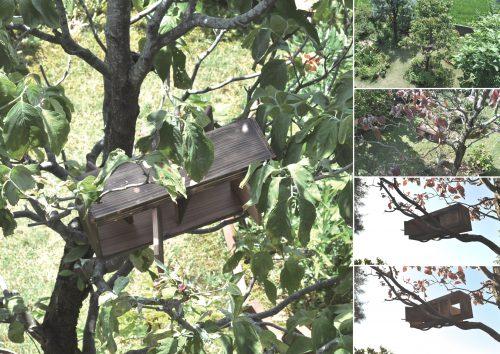 回転する壁をもつ鳥の住宅